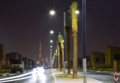 Sustainable Outdoor Lighting Solutions